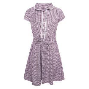 Girls School Summer Gingham Dress - Burgundy Check