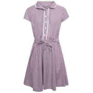 Girls School Summer Gingham Dress 'Diplomat' - Lilac Check