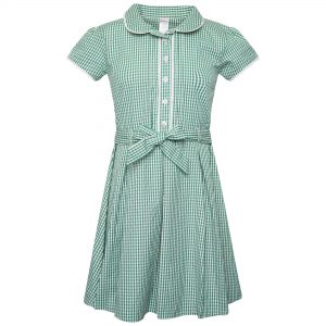 Girls School Summer Gingham Dress - Plus Fit - Green Check