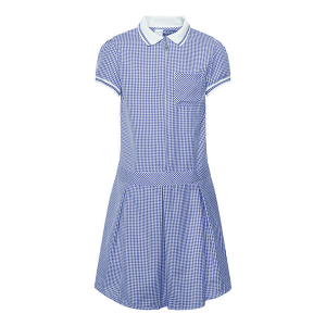 Girls School Summer Gingham Dress - Heart Zip - White Collar - Navy Check