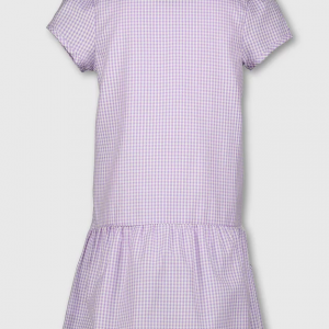 Girls School Lilac Gingham Summer Dress Pleated Check Butterfly Zip